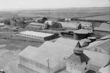 Sugar Plantation Photographic Print