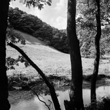 A View from a Wooded Riverbank with Tree Trunks in the Foreground Photographic Print by John Gay