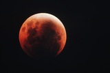 Lunar Eclipse Photographic Print