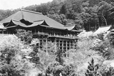 View of Japanese Temple Photographic Print