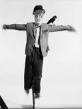 Scarecrow with Crow on His Shoulder Photographic Print