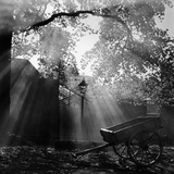 Diffused Light Filtering Down onto an Empty Cart Standing in Front of Silhouetted Buildings Photographic Print by John Gay
