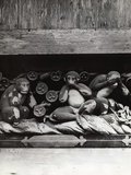 Three Wise Monkeys Sculpture at Toshugu Shrine Photographic Print