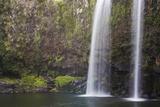 Whangarei Falls Photographic Print