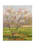 Apple Tree in Blossom, Pommiers en Fleurs Impression giclée par Henri Martin