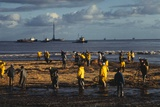 Workmen Cleaning Up after Oil Spill Photographic Print