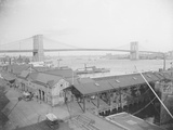 View of the Brooklyn Bridge Photographic Print