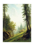 Among the Bernese Alps Giclee Print by Albert Bierstadt