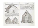 Illustration of House Types Giclee Print by Giovanni Antonio Rusconi