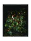 Wild Strawberries Giclee Print by Otto Diderich Ottesen