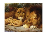 A Royal Family of Lions Giclee Print by William Strutt