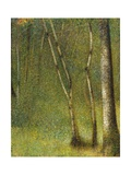 The Forest at Pontaubert Gicléedruk van Georges Seurat