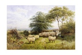 Changing Pastures Giclee Print by George Shalders