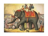 Circus Elephant and Riders Giclee Print