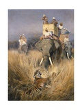 The Tiger Shoot Giclee Print by William Woodhouse