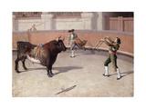 Bullfighting Scene Giclee Print