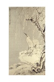 White Egrets on a Bank of Snow Covered Willows Giclee Print by Huang Shen
