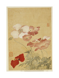 Poppies Giclee Print by Yun Shouping