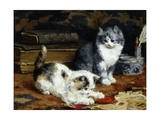 Kittens at Play Giclee Print by Charles Van Den Eycken