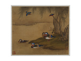 Mandarin Ducks Playing on a Willow Bank from an Album of Bird Paintings Giclee Print by Gao Qipei