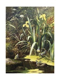 A Woodland Pool Giclee Print by Olaf August Hermansen