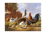 Albertus Verhoesen - Spring Chickens Digitálně vytištěná reprodukce