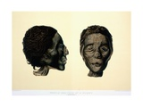 Color Lithograph Showing Face and Profile of Female Mummy Giclee Print