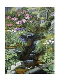 Alpine Flowers by a Stream Giclee Print by Otto Diderich Ottesen