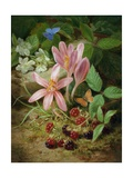 Autumn Flower with Blackberries Giclee Print by Josef Lauer