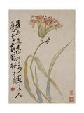 Lily Giclee Print by Li Shan