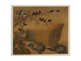 Mynah Birds Gathering in a Tree by a Stream from an Album of Bird Paintings Reproduction procédé giclée par Gao Qipei
