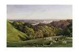 Evening in Arundel Park, Sussex, England Giclee Print by Charles James Adams