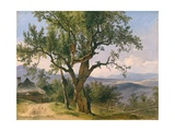 The Old Tree Giclee Print by Friedrich Gauermann