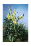 Yellow Flowers in Front of the Blue Sky Giclee Print by Louis-Apollinaire Sicard