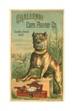Challenge Corn Planter Co. Trade Card with Bulldog Giclee Print