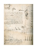 Notebook Drawing of Grappling Hooks Giclee Print by  Leonardo da Vinci
