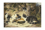 The Bowl of Milk Giclee Print by Julius Adam