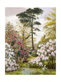 A Pretty Woodland Garden Giclee Print by Marian Emma Chase