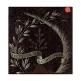 Ginevra De' Benci (Verso Inscribed Wreath) Giclee Print by  Leonardo da Vinci