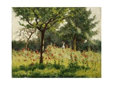 The Poppy Field Giclee Print by Alphonse Asselbergs