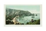 Avalon, Santa Catalina Island Postcard Giclee Print