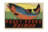 Puget Sound Salmon Travel Decal Giclee Print
