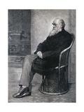 Portrait de Charles Darwin Reproduction procédé giclée