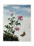 Early 19th-Century Chinese Watercolor of Pink Flowers Giclee Print