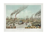 The Levee - New Orleans Giclee Print
