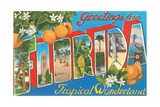 Greetings from Florida, Tropical Wonderland Giclee Print