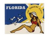 Florida Travel Decal Reproduction procédé giclée