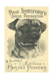 Prof. Horsford's Baking Powder Trade Card Giclee Print