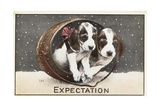 Expectation Postcard Giclee Print