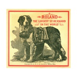 Roland the Largest St. Bernard in the World Trade Card Giclee Print